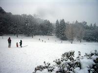060121_snowy_day